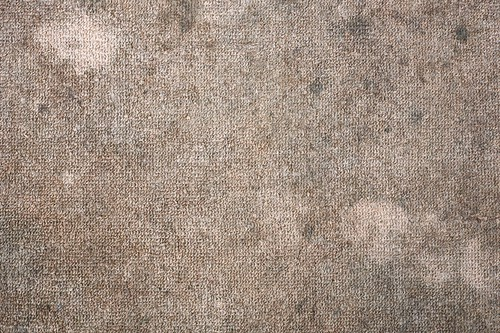 Reasons for Hiring Expert Carpet Cleaning Service