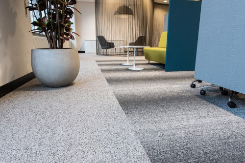 What Should I Look For In Carpet Quality?